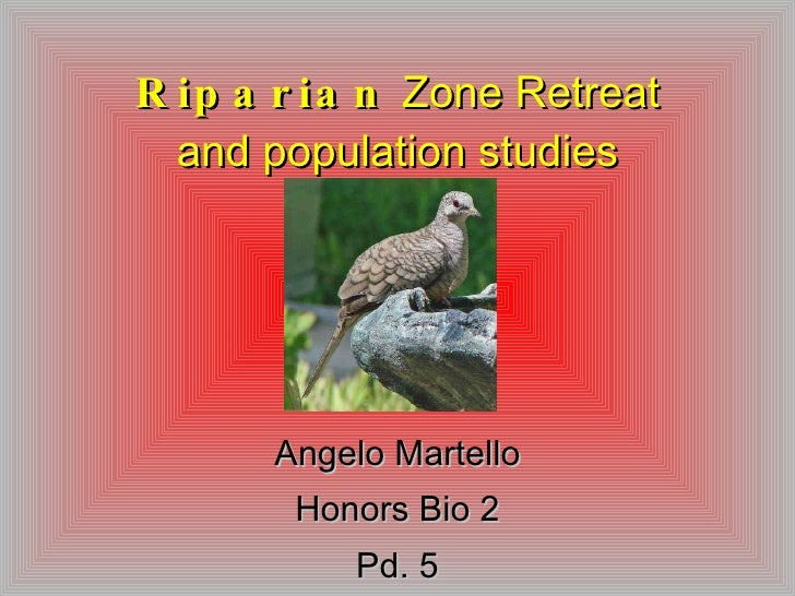 Riparian  Zone Retreat and population studies Angelo Martello Honors Bio 2 Pd. 5