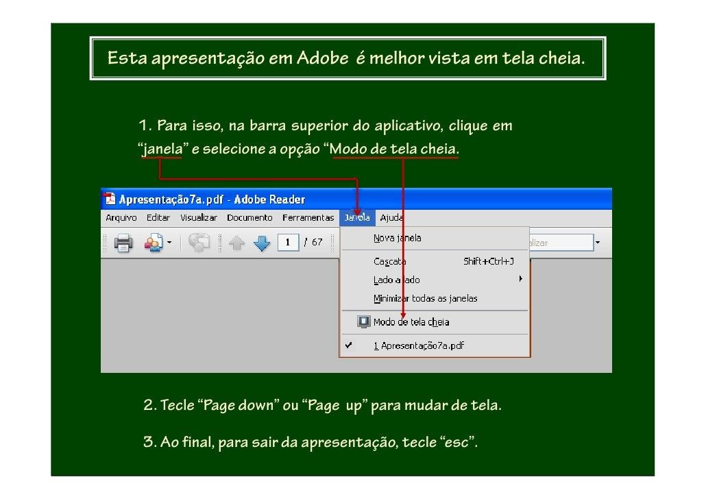Esta apresentação em Adobe é melhor vista em tela cheia.      1. Para isso, na barra superior do aplicativo, clique em    ...