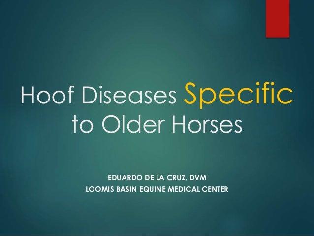 Hoof Diseases Specific to Older Horses EDUARDO DE LA CRUZ, DVM LOOMIS BASIN EQUINE MEDICAL CENTER