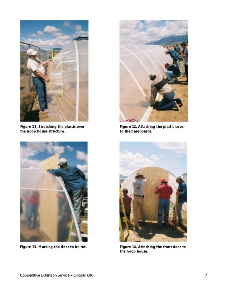 Figure 11. Stretching the plastic over         Figure 12. Attaching the plastic coverthe hoop house structure.            ...