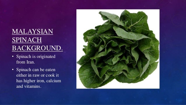 MALAYSIAN SPINACH BACKGROUND. • Spinach is originated from Iran. • Spinach can be eaten either in raw or cook it has highe...