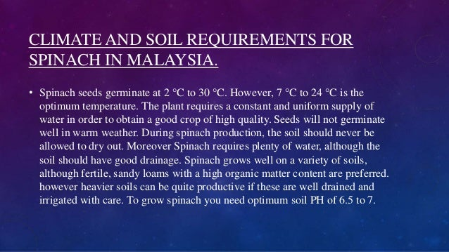CLIMATE AND SOIL REQUIREMENTS FOR SPINACH IN MALAYSIA. • Spinach seeds germinate at 2 °C to 30 °C. However, 7 °C to 24 °C ...