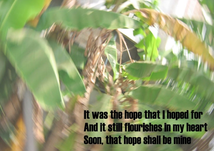 a hope for hope