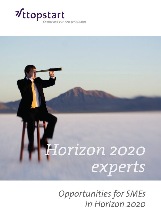 Opportunities for SMEs in Horizon 2020 Horizon 2020 experts