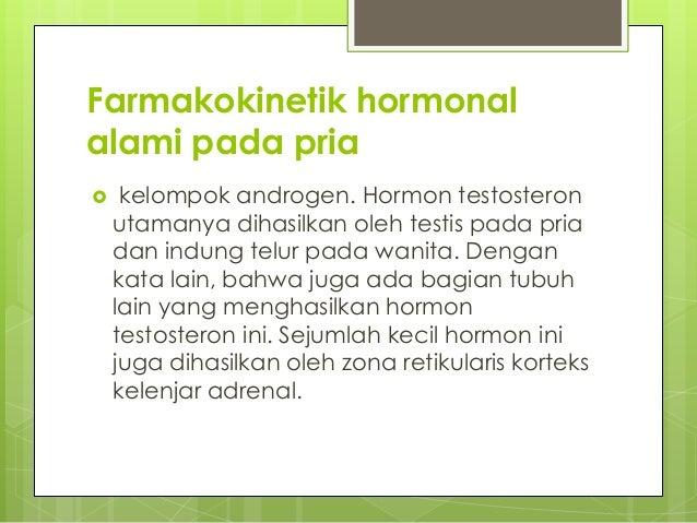 hormon alami pria