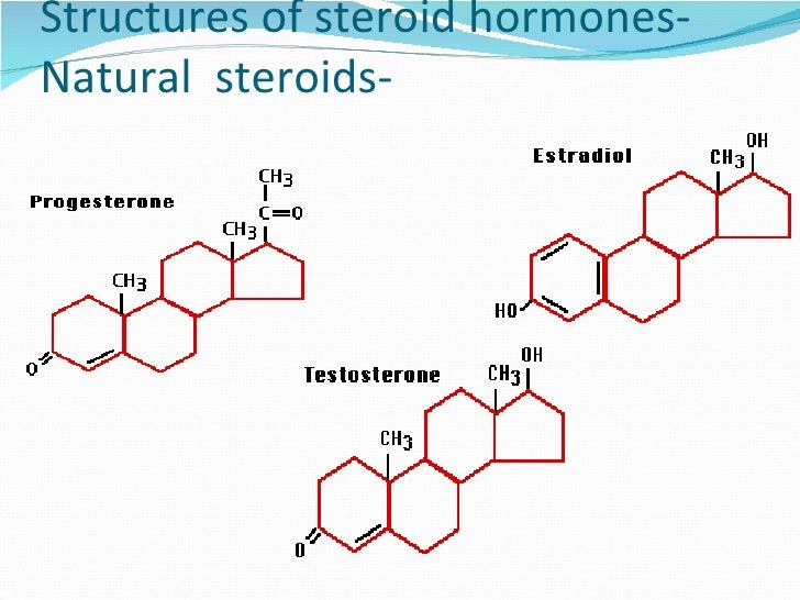 functions of testosterone
