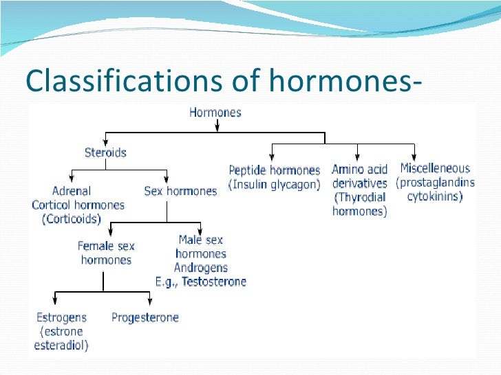 the hormone testosterone is produced by the