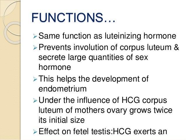 Hormonal changes in pregnancy