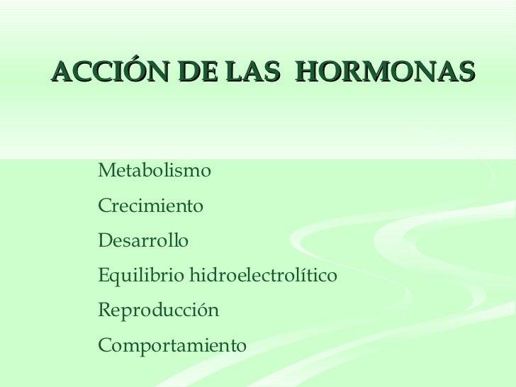 ACCIÓN DE LAS  HORMONAS <ul><li>Metabolismo </li></ul><ul><li>Crecimiento </li></ul><ul><li>Desarrollo </li></ul><ul><li>E...