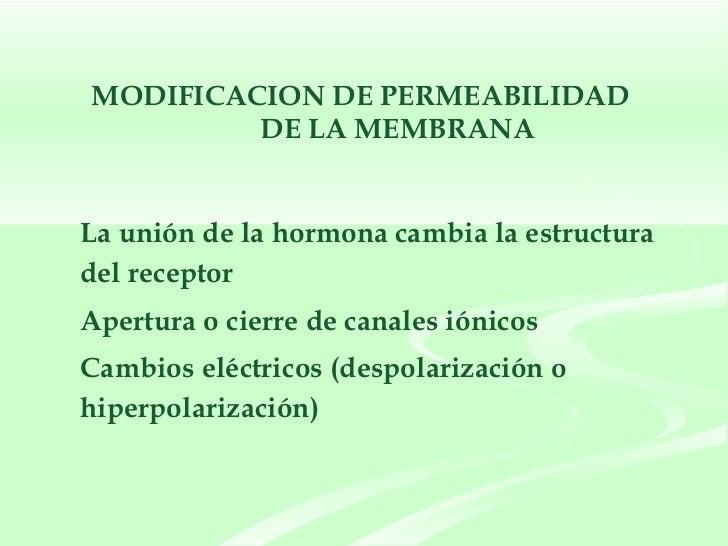 MODIFICACION DE PERMEABILIDAD  DE LA MEMBRANA <ul><li>La unión de la hormona cambia la estructura del receptor </li></ul><...