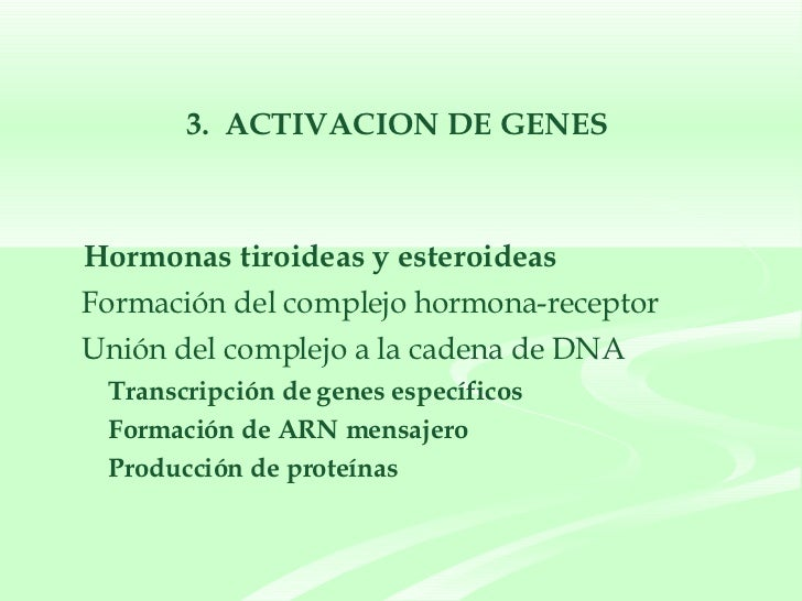 <ul><ul><li>Hormonas tiroideas y esteroideas </li></ul></ul><ul><li>Formación del complejo hormona-receptor  </li></ul><ul...