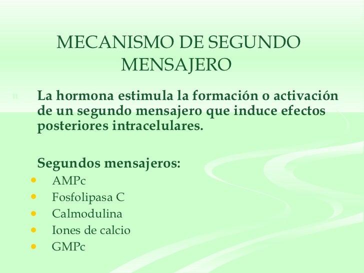 <ul><li>La hormona estimula la formación o activación de un segundo mensajero que induce efectos posteriores intracelulare...