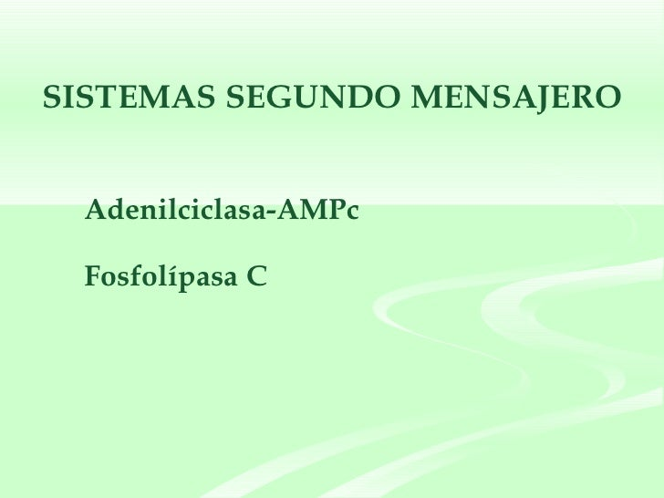SISTEMAS SEGUNDO MENSAJERO <ul><li>Adenilciclasa-AMPc </li></ul><ul><li>Fosfolípasa C  </li></ul>
