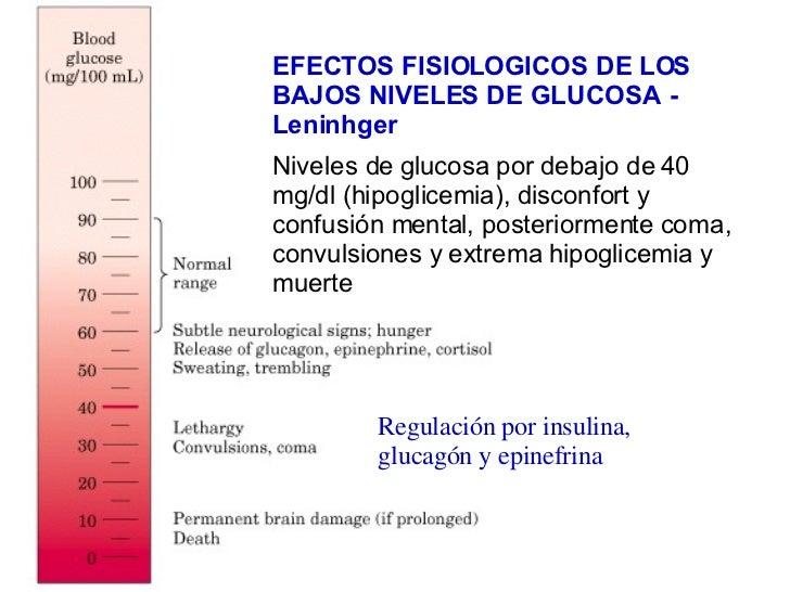 Un curso corto en dieta metabolismo acelerado libro