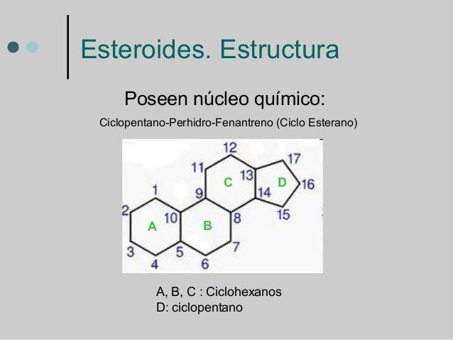 esteroides hormonas masculinas