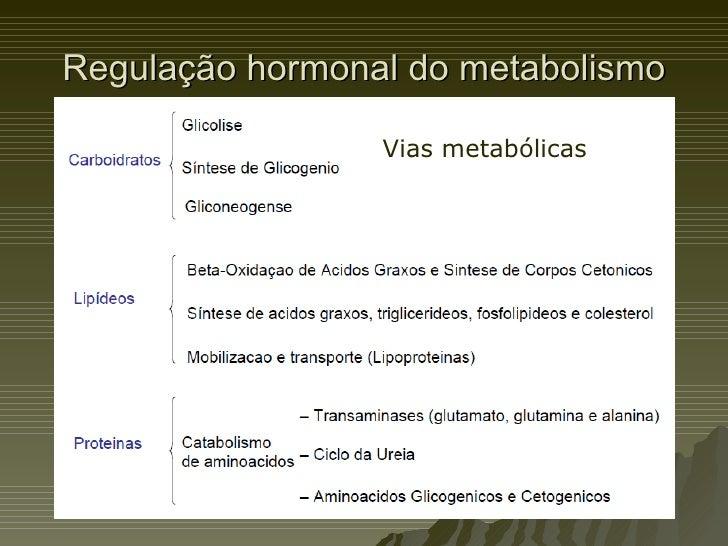 Regulação hormonal do metabolismo Vias metabólicas