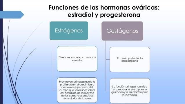 que hacen las hormonas esteroideas