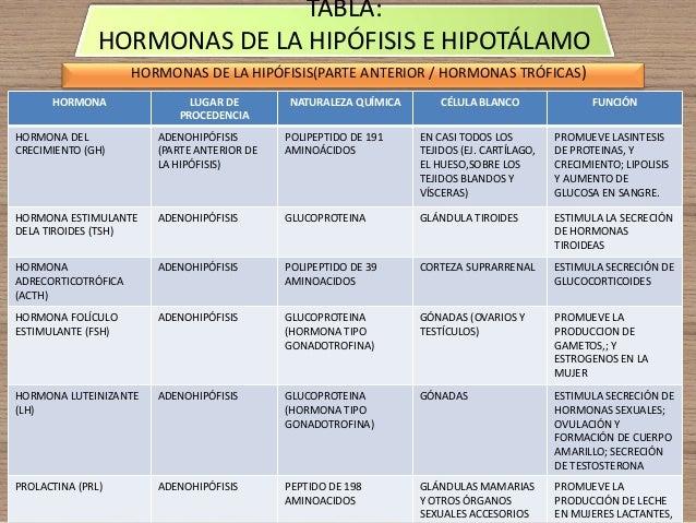 Hormonas (mapa conceptual y tablas hipotalamo hipofisis)