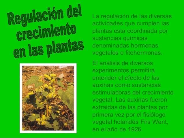 Hormonas vegetales for Hormonas en las plantas