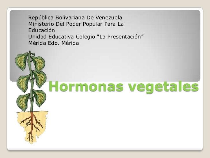 """República Bolivariana De Venezuela<br />Ministerio Del Poder Popular Para La Educación<br />Unidad Educativa Colegio """"La ..."""