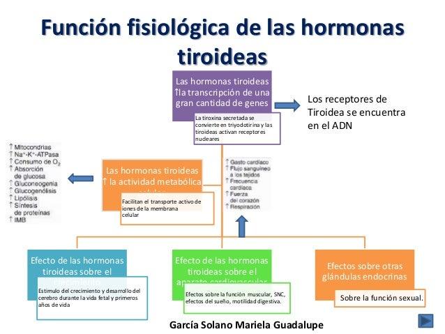 receptores para hormonas esteroidales