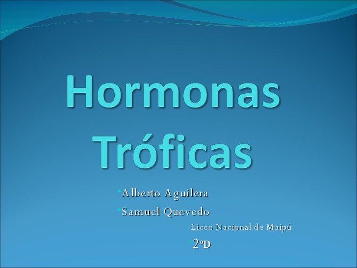 <ul><li>Alberto Aguilera </li></ul><ul><li>Samuel Quevedo </li></ul><ul><ul><ul><ul><ul><li>Liceo Nacional de Maipú </li><...