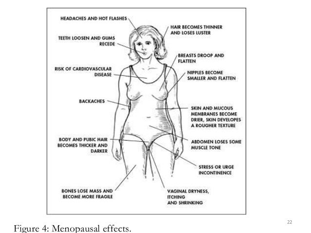 Figure 4: Menopausal effects. 22