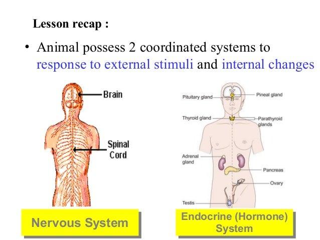 Hormones 5076 2015