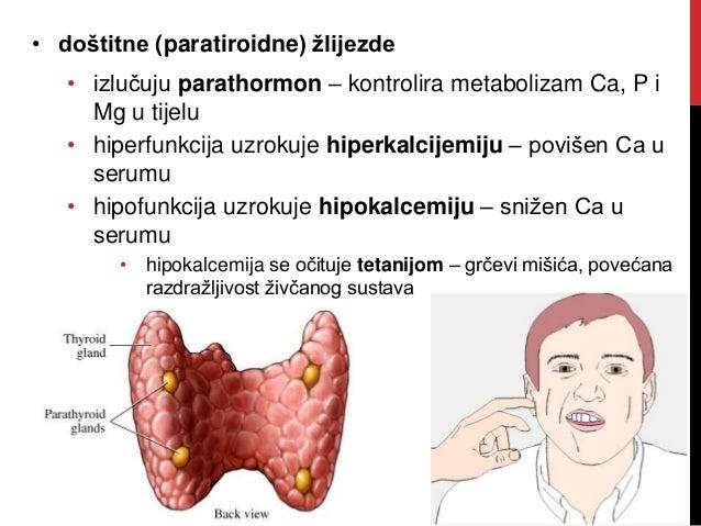 HORMONSKA KONTRACEPCIJA (Yasmine, Yaz, Diane35, Triquilar…) • sredstva koja sprječavaju začeće sprječavajući ovulaciju • u...