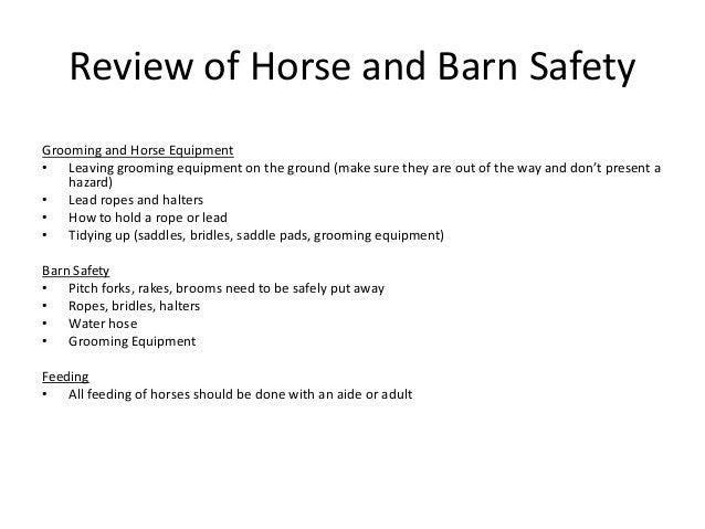 sample business plan horse riding