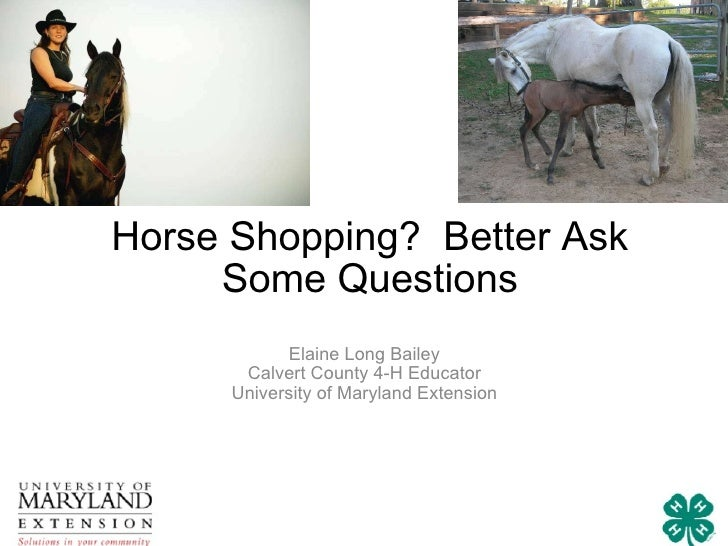 Horse Shopping?  Better Ask Some Questions Elaine Long Bailey Calvert County 4-H Educator University of Maryland Extension
