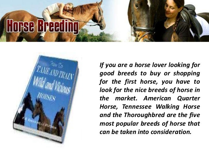 If you are a horse lover looking forgood breeds to buy or shoppingfor the first horse, you have tolook for the nice breeds...