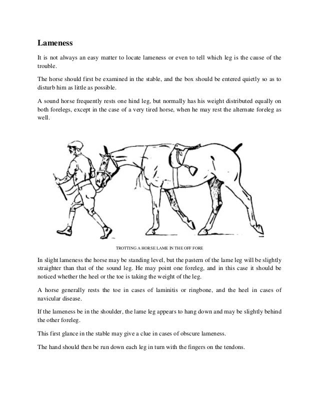Lameness It is not always an easy matter to locate lameness or even to tell which leg is the cause of the trouble. The hor...