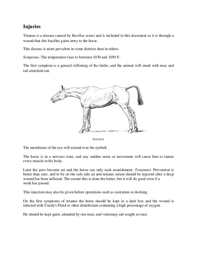 Injuries Tetanus is a disease caused by Bacillus tetani and is included in this document as it is through a wound that thi...