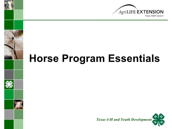 Horse Program Essentials  Texas 4-H and Youth Development
