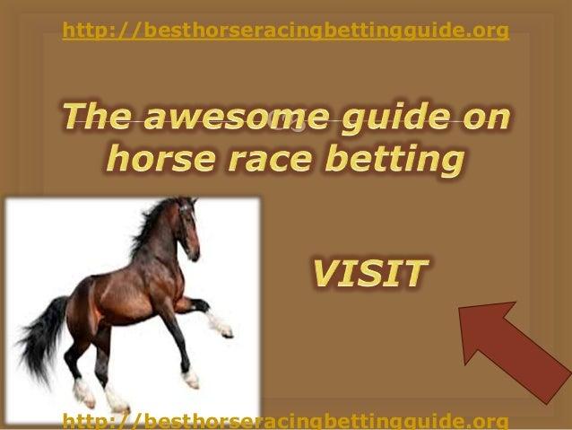 Understanding Betting Odds Calculators