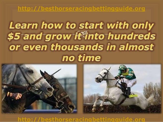 International horse racing betting calculator ny post betting lines nfl week 2