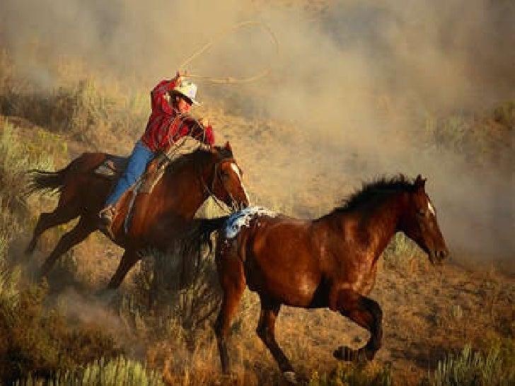 Horses By Alex Guilfoyle Slide 3
