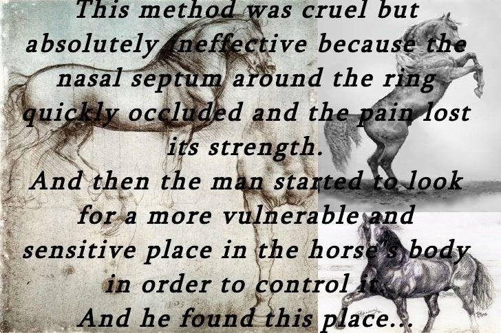 Horse Bit History