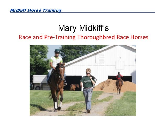 Midkiff Horse Training Mary Midkiff's Race and Pre-Training Thoroughbred Race Horses
