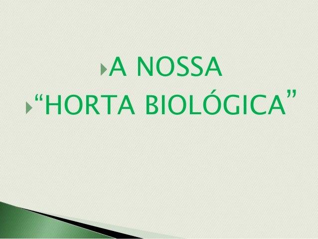 """A NOSSA """"HORTA BIOLÓGICA"""""""