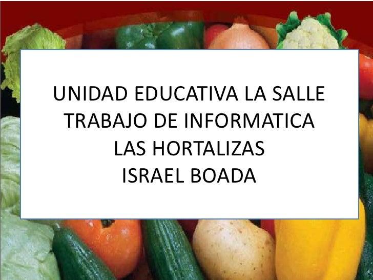 UNIDAD EDUCATIVA LA SALLE TRABAJO DE INFORMATICA     LAS HORTALIZAS      ISRAEL BOADA