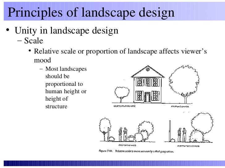 Hort design for Garden design principles