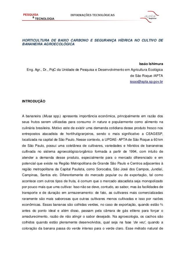 HORTICULTURA DE BAIXO CARBONO E SEGURANÇA HÍDRICA NO CULTIVO DE BANANEIRA AGROECOLÓGICA Issáo Ishimura Eng. Agr., Dr., PqC...