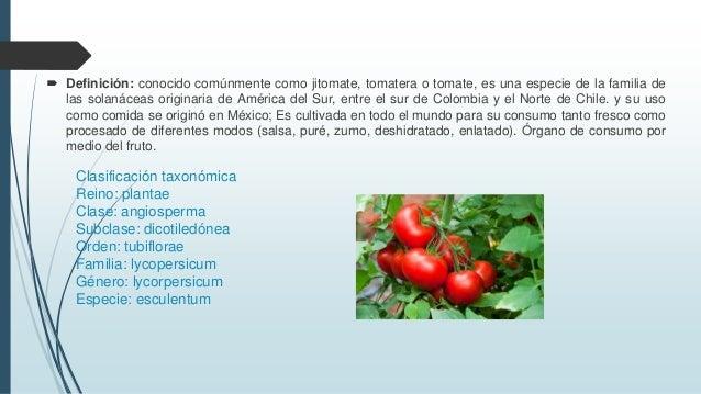 Horticultura tc i for Horticultura definicion
