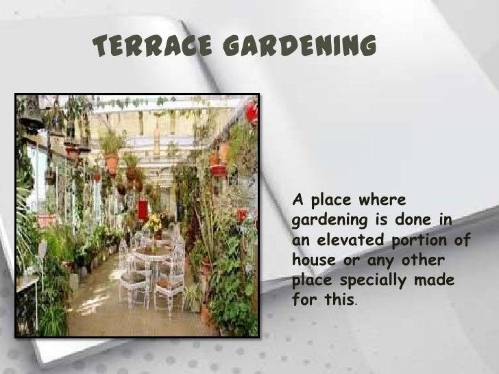 Astounding Terrace Garden Ppt Design Contemporary - Simple Design ...