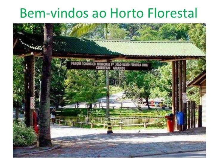 Bem-vindos ao Horto Florestal