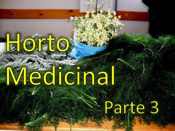 Horto Medicinal <br />Parte 3<br />