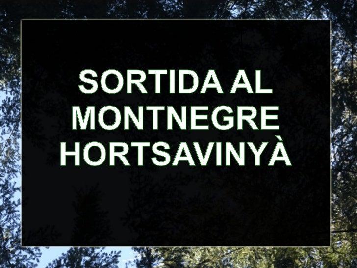 SORTIDA AL MONTNEGRE HORTSAVINYÀ