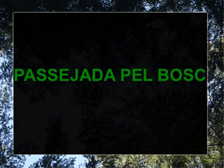 PASSEJADA PEL BOSC